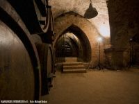Alte Weinfässer vor dem Verkostungsraum